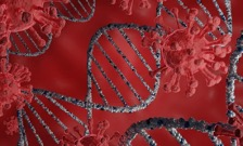 Gene hunters turn up new clues to help explain why Covid-19 hits some people so hard
